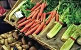 Cuisine végétarienne à domicile