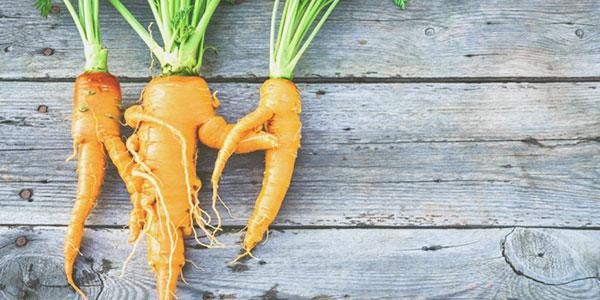 Fruits et légumes moches, initiative anti-gaspillage