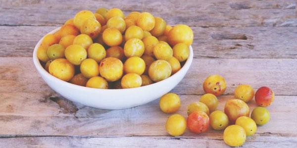 La mirabelle, un super fruits pour un été en pleine santé